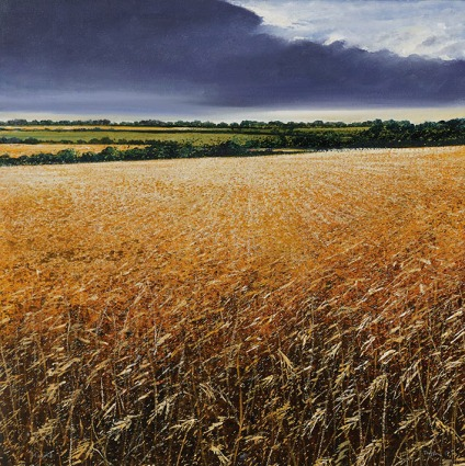 """Harvest"" by Rory J Browne"