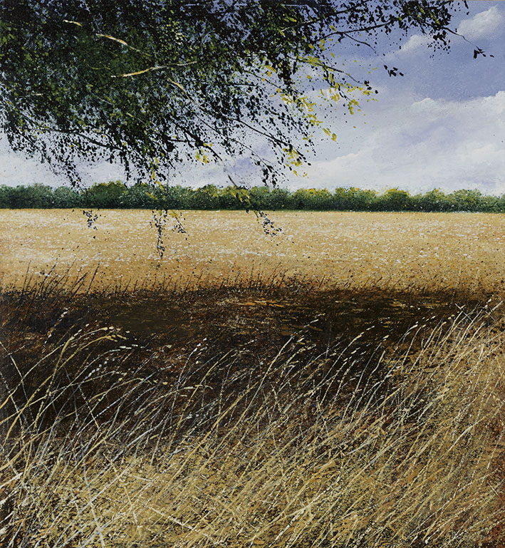"""Harvested field and shadow"" by Rory J Browne"