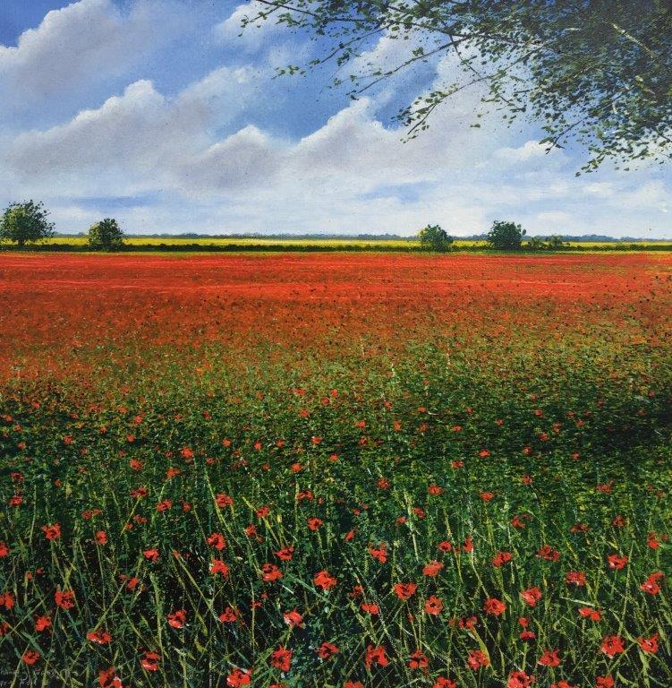 """Overhanging branches, poppy field"" by Rory J Browne"